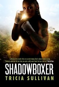 shadowboxer-mockup-rgb